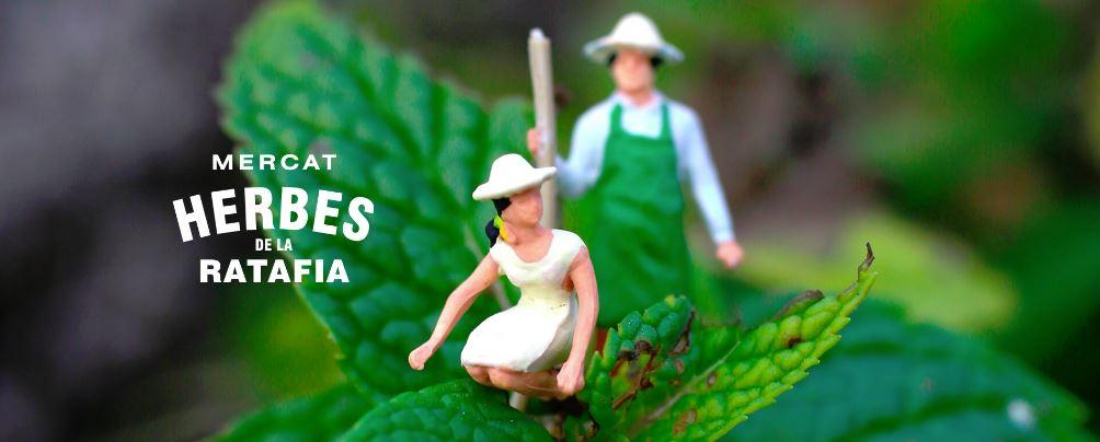Mercat de les Herbes de la Ratafia, el dies  4 i 5 de maig.